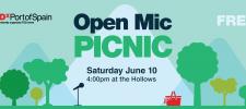 Open Mic Picnic
